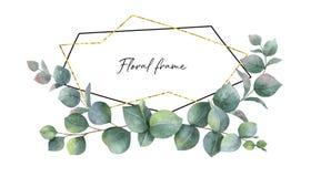 Akwarela wektorowy skład od gałąź eukaliptusowa i złocista geometryczna rama royalty ilustracja