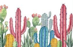 Akwarela wektorowy sztandar kaktusy i sukulent zasadza odosobnionego na białym tle Zdjęcie Stock