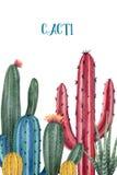 Akwarela wektoru karta kaktusy i sukulent zasadza odosobnionego na białym tle Obrazy Royalty Free