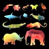 Akwarela wektoru różni zwierzęta ilustracji