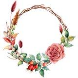 Akwarela wianek z dogrose i kwiatem Wręcza malującą drzewo granicę z dalią, gałąź i liśćmi, lagurus ilustracji