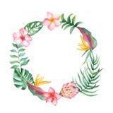 Akwarela wianek z tropikalnymi liśćmi i kwiatami, akwareli plamy ilustracja wektor