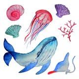 Akwarela wielorybia i denni mieszkanowie, odizolowywający na białym tle ilustracji