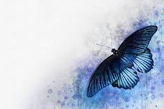 Akwarela wizerunek błękitny motyl na rocznika tle Motyli zako?czenie acrylic kolor?w papier ilustraci papier Zwierz?cy ?wiat inse royalty ilustracja