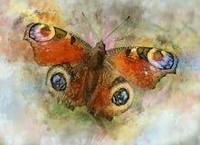Akwarela wizerunek motyl na rocznika tle Motyli zakończenie acrylic kolorów papier ilustraci papier Zwierzęcy świat insekty ilustracja wektor