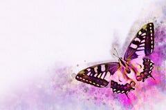 Akwarela wizerunek motyl na rocznika tle Motyli zako?czenie acrylic kolor?w papier ilustraci papier Zwierz?cy ?wiat insekty ilustracji
