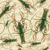 Akwarela wzór bezszwowy wzór na morskim temacie na zodiaka znaku i, nowotwór, homar, rzeczny rakowy, zieleń, szczegółowy il Zdjęcia Stock