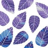 Akwarela wzór na liścia temacie Jesień wzór Fotografia Royalty Free