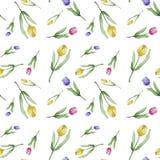Akwarela wzór tulipany ilustracji