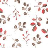 Akwarela wzór z liśćmi i gałąź ilustracja wektor