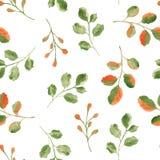 Akwarela wzór z liśćmi i gałąź royalty ilustracja