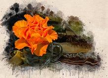 Akwarele malować piękne pomarańczowe róże zdjęcie royalty free