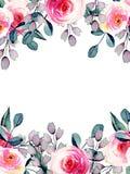 Akwareli ładne róże, błękit i purpurowe gałąź karciany szablon, ręka rysująca na białym tle ilustracja wektor