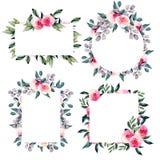 Akwareli ładne róże, błękit i zieleń, rozgałęziają się ramy kolekcje, ręka rysująca na białym tle royalty ilustracja
