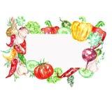 Akwareli świezi ivegetables z biel ramą dla teksta Ręka bębeny ilustracji
