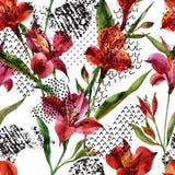 Akwareli Alstroemeria kwitnie bezszwowego wzór na białym tle ilustracji