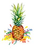 Akwareli ananas z tęczy pluśnięciem Fotografia Royalty Free