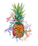 Akwareli ananas z tęczy pluśnięciem Zdjęcia Royalty Free