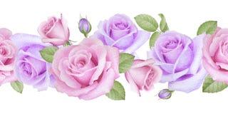 Akwareli bezszwowa granica z różami Zdjęcie Stock