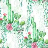 Akwareli bezszwowy deseniowy tło z sukulentami i kaktusem Zdjęcia Stock