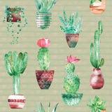 Akwareli bezszwowy deseniowy tło z sukulentami i kaktusem w garnkach Zdjęcie Stock