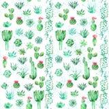 Akwareli bezszwowy deseniowy tło z sukulentami i kaktusem w garnkach Zdjęcia Stock