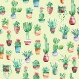 Akwareli bezszwowy deseniowy tło z sukulentami, kaktus w garnkach Zdjęcie Royalty Free