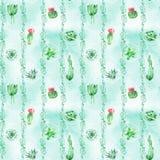 Akwareli bezszwowy deseniowy tło z sukulentami, kaktusem i terrariami, Obrazy Stock