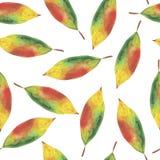 Akwareli bezszwowy tło od jesień liści royalty ilustracja