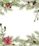 Akwareli bożych narodzeń zaproszenie Jodły gałąź z holly, jemiołą i poinsecją, Nowego roku drzewa granica z wystrojem dla ilustracji