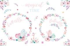 Akwareli boho kwiecisty wianek Artystyczna naturalna rama: liście, piórka, kwiaty, Odizolowywający na białym tle artystyczny ilustracja wektor
