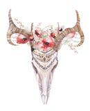 Akwareli boho rogacza artystyczna czaszka Zachodni ssaki ilustracja wektor