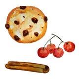 Akwareli ciastka, cynamon i viburnum jagody, ilustracja wektor