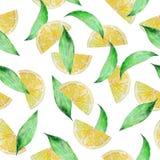 Akwareli cytryny bezszwowi deseniowi plasterki z liśćmi ilustracji