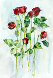 Akwareli czerwieni kwiaty Zdjęcia Royalty Free