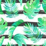 Akwareli dżungli bezszwowi wzory Zdjęcie Royalty Free