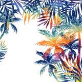 Akwareli drzewka palmowe na czarnym tle Zdjęcia Royalty Free