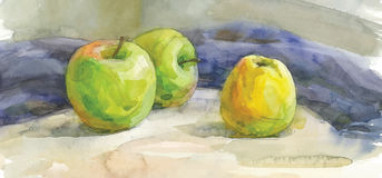 Akwareli etiuda jabłka Zdjęcia Royalty Free