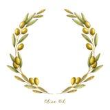 Akwareli gałązki oliwnej wianek royalty ilustracja