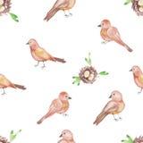 Akwareli gniazdeczek i ptaków deseniowy bezszwowy projekt na białym tle ilustracja wektor