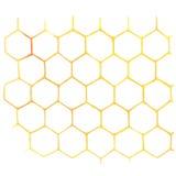 Akwareli Honeycomb na bielu Zdjęcia Stock