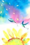 Akwareli hummingbird słonecznikowy tło Fotografia Royalty Free