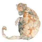 Akwareli ilustracja małpia sylwetka Fotografia Stock