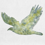 Akwareli ilustracja orzeł sylwetka Obraz Royalty Free