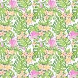 Akwareli ilustracja tropikalny wzór, plumeria, różowy flaming opuszcza monstera wzór Rysujący dla drukować, hawajczyka styl zdjęcia royalty free