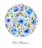 Akwareli ilustracja z błękitnym kwiecistym okręgiem Obrazy Royalty Free