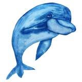 Akwareli ilustracje, Rozochocony delfin odizolowywający na białym tle zdjęcia royalty free