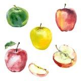 Akwareli jabłka ustawiający Zdjęcie Stock