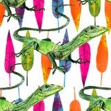 Akwareli jaszczurka, ręka malował rysunek kontur Obraz Stock