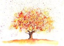 Akwareli jesieni drzewo ilustracja wektor